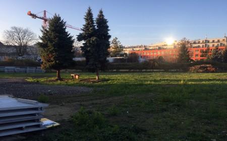 Großzügiger Lagerplatz für KFZ-Abstellplätze/ Container in 1110 Wien zu vermieten - provisionsfrei!